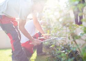 Photo d'un paysagiste en entretien